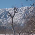 Nebiyan Yaylası ve Dağı 1 150x150 - Foto Galeri