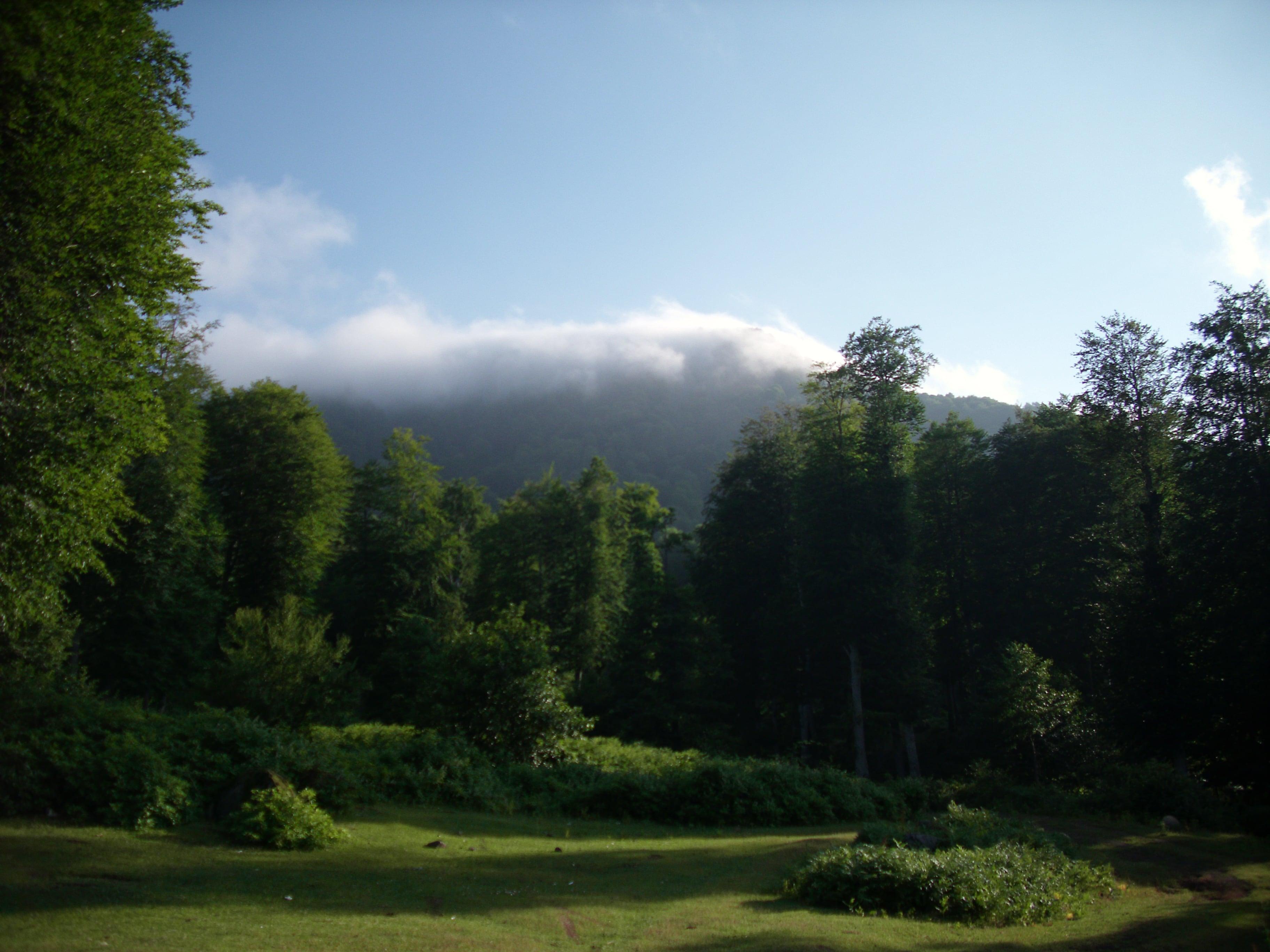 Nebiyan Yaylası ve Dağı 6 - Nebiyan Yaylası ve Dağı (6)