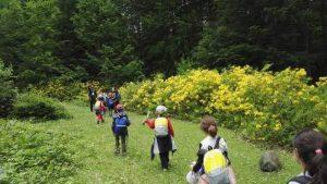 dağ yürüyüş 300x169 - Nebiyan Dağı ve Yaylası