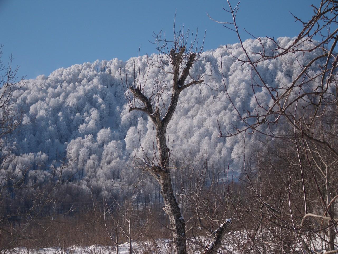 Nebiyan Dağı Kış Resimleri 1 - Nebiyan Dağı Kış Resimleri (1)