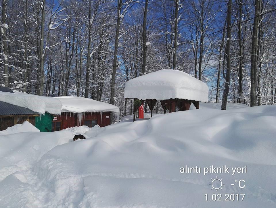 Nebiyan Dağı Kış Resimleri 7 - Nebiyan Dağı Kış Resimleri (7)