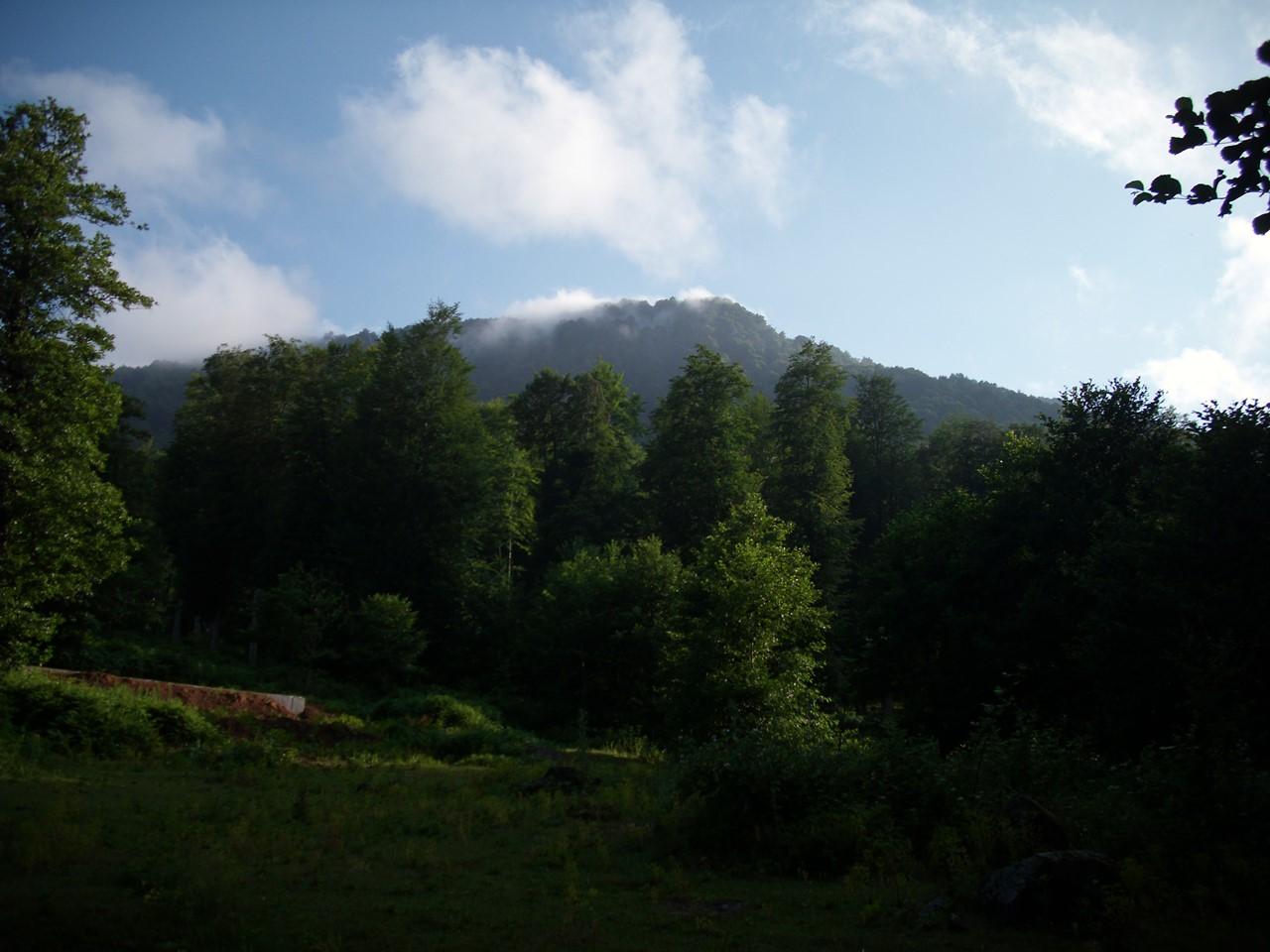 Nebiyan Doğa Yaz 2 - Nebiyan Doğa Yaz (2)