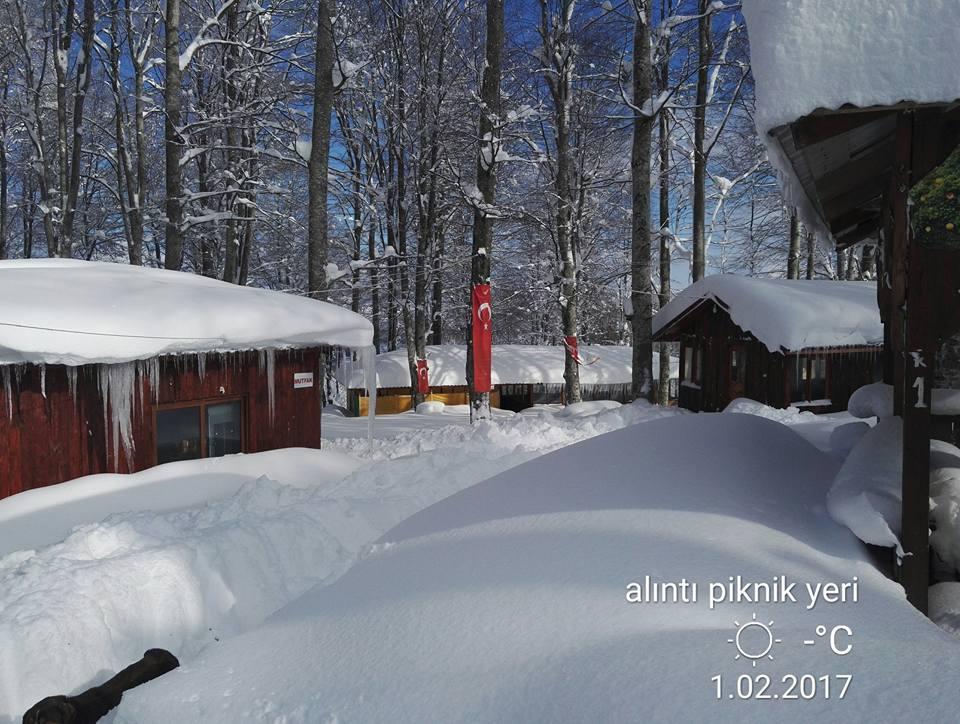 Nebiyan Yaylası Alinin Piknik yeri 13 - Nebiyan-Yaylası-Alinin-Piknik-yeri-13