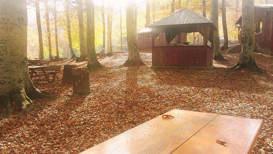 Nebiyan Yaylası Alinin Piknik yeri 15 - Ali'nin Piknik Yeri