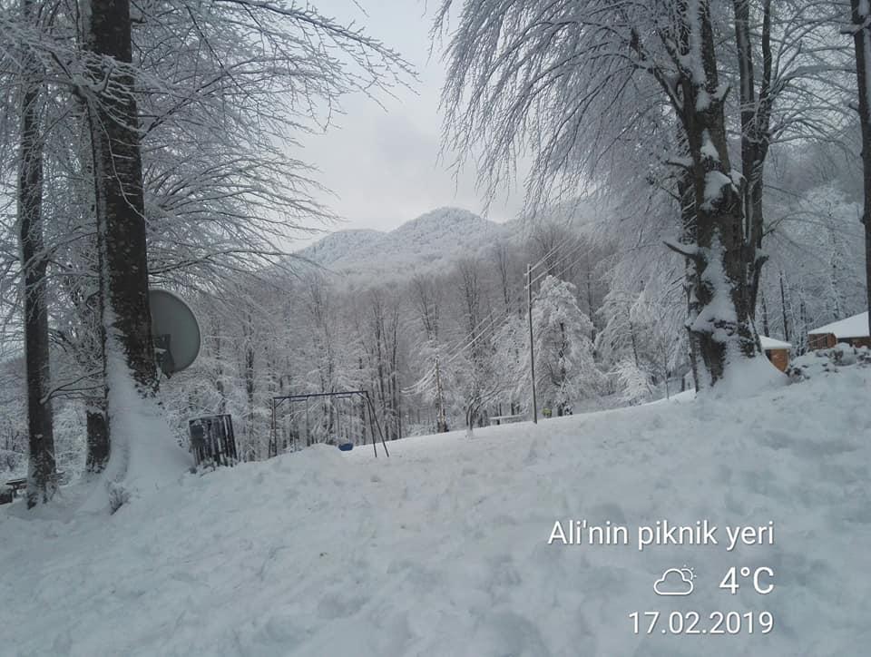 Nebiyan Yaylası Alinin Piknik yeri 17 - Ali'nin Piknik Yeri