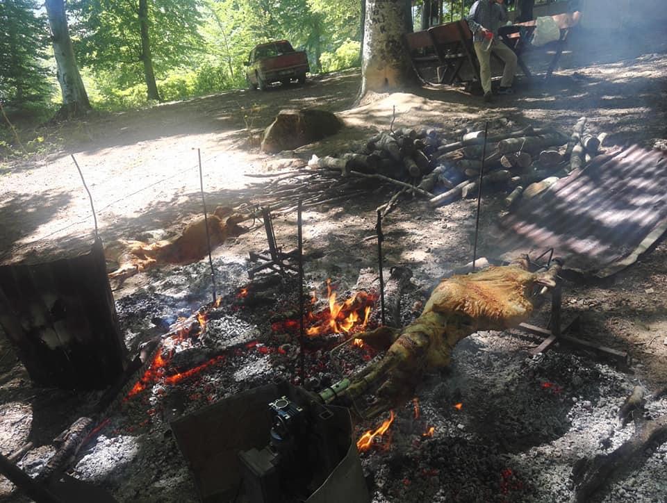 Nebiyan Yaylası Alinin Piknik yeri 21 - Ali'nin Piknik Yeri