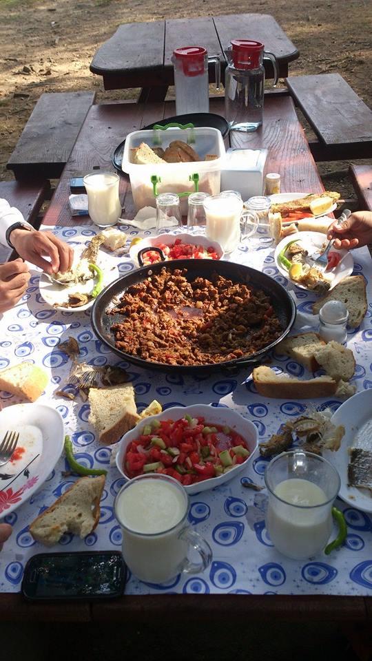 Nebiyan Yaylası Alinin Piknik yeri 7 - Ali'nin Piknik Yeri
