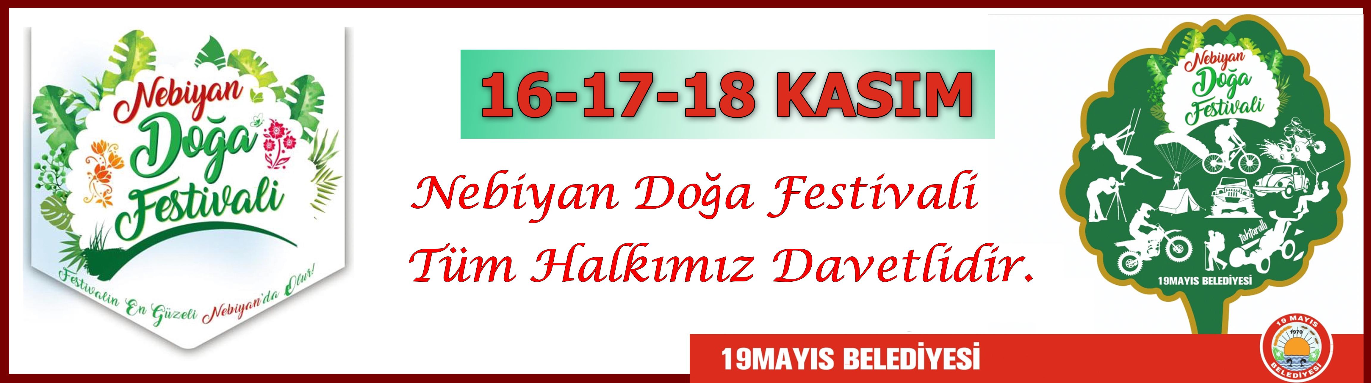 festival 1 - festival