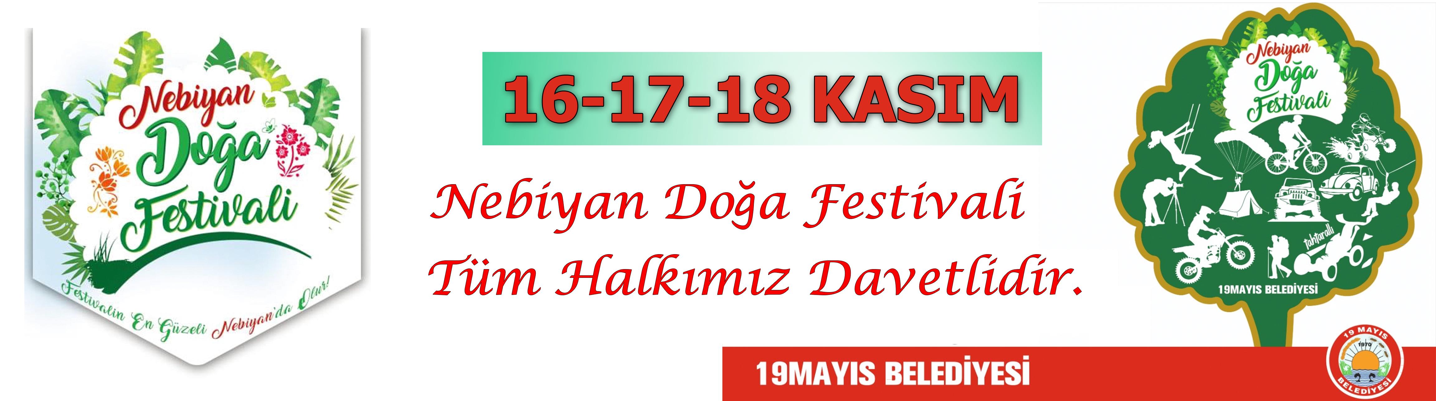 festival - festival