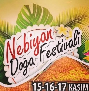 nebiyan festival - nebiyan festival