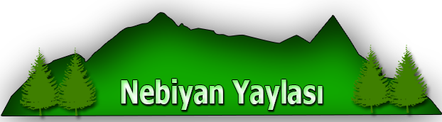 logo3 3 - logo3