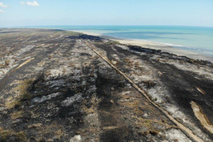 1332333 kus cenneti ndeki tahribat havadan goruntulendi 5f62067c0a050 - Kızılırmak deltasındaki yangın sonrası kalan görüntüler