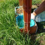 120722806 1763866703774812 6465167102680131153 o 150x150 - 19 mayıs belediyesi sokak  hayvanlarına yem ve su dağıttı