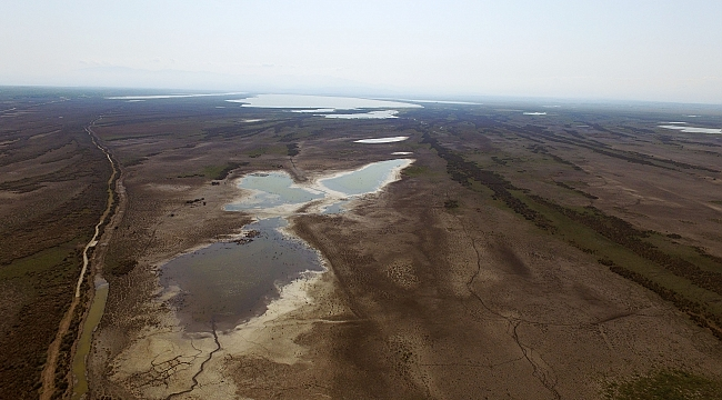 kizilirmak deltasi nda kuraklik tehdidi - kizilirmak-deltasi-nda-kuraklik-tehdidi
