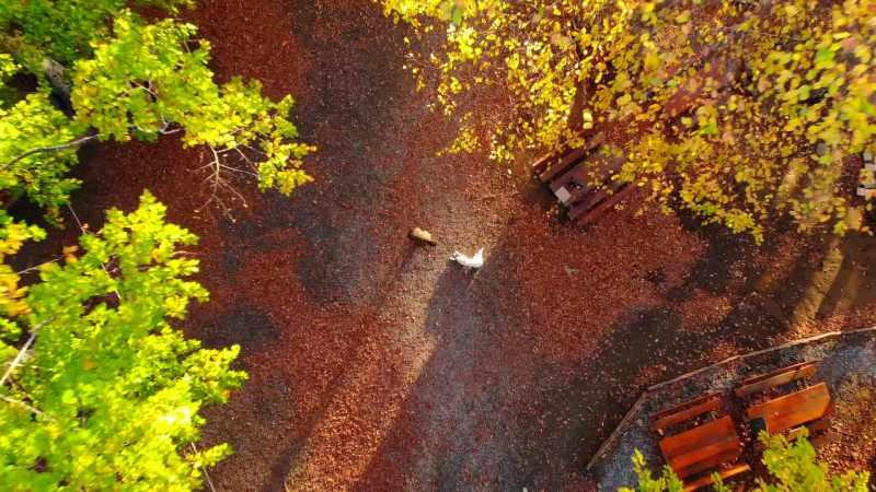 dPxdK 1605531436 9509 - Nebiyan Dağı'nda masalsı sonbahar